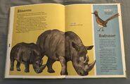 The Dictionary of Ordinary Extraordinary Animals (45)