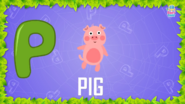 Baby Time Pig