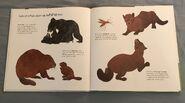 Can an Aardvark Bark? (8)