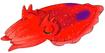 Cuttlefish ty-the-tasmanian-tiger