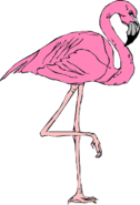 Flamingo-46481 640-1-