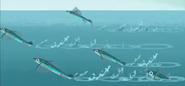 FlyingFish.jpeg