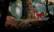 Fox-and-the-hound-disneyscreencaps.com-8063