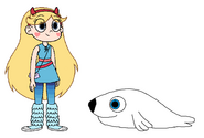 Star meets Harp Seal