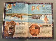 Wild Cats and Other Dangerous Predators (3)