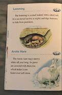 Animals of the Polar Regions (12)
