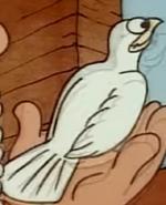 Beginner's Bible Pigeon
