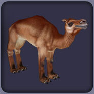 Giant Camel (Blue Fang)