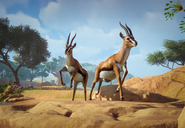Thomsons-gazelle-planet-zoo