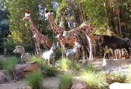 2013-1204-Giraffe-hats
