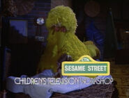 Big Bird is asleep the end of episode 2243