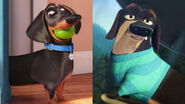 Buddy (The Secret Life of Pets) and Mr. Weenie (Open Season)