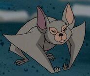 Fred Bat TVSB
