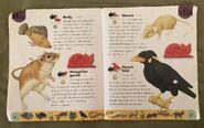 Pet Dictionary (15)