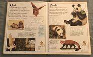 The Kingfisher First Animal Encyclopedia (49)