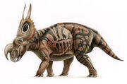 0zV9oeejmd-Dinosaurus - Dinosaur - Dinosaurio - Dinosaure - Einiosaurus001.jpg