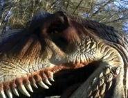 Allosaurus-growls-movie-3dda