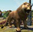 Congo-lion-zootycoon3