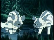 JEL Striped Hyenas