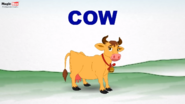MagicBox Cow