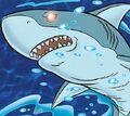 Shark SS