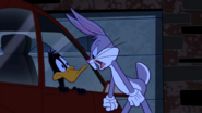 Bugs gets angry at daffy