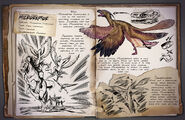 Microraptor Dossier