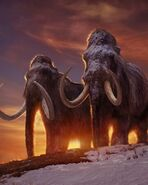 Woolly Mammoth Bull and Cow