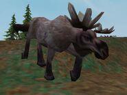 Zt2-moose