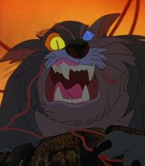 Dragon The Cat