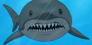 Family Guy Shark