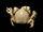 Pea Crab