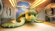 A Turtle's Tale Sammy's Adventures Sammy