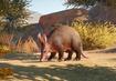 Aardvark-planet-zoo