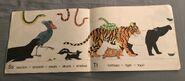 Animal Parade (11)