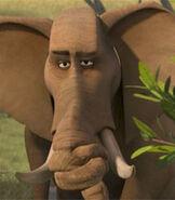 Elephant-madagascar-escape-2-africa-8.32