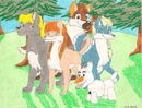 Frozen Wolf Pack by SummerShe-Wolf