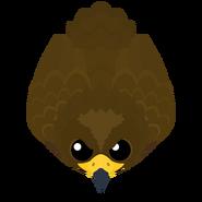 Mopeio Golden Eagle