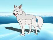Rileys Adventures Arctic Wolf