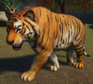 Tiger, Bengal (Planet Zoo)