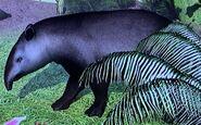 Brazilian Tapir ZTX