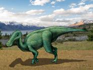 Dm anatotitan