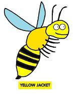 Emmett's ABC Book Yellow Jacket