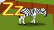 TFL Zebra