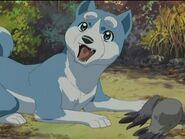 Weed the Dog (Ginga) as Pinocchio