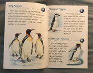 Animals of the Polar Regions (3)