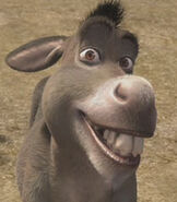 Donkey in Shrek (film)