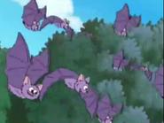 Dora Bat