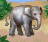Elephant-jumpstart-preschool