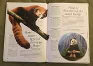 Endangered Animals (Over 100 Questions and Answers to Things You Want to Know) (5)